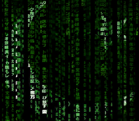 Pakistani-hacker-hacks-indian-bioresource-information-network-3