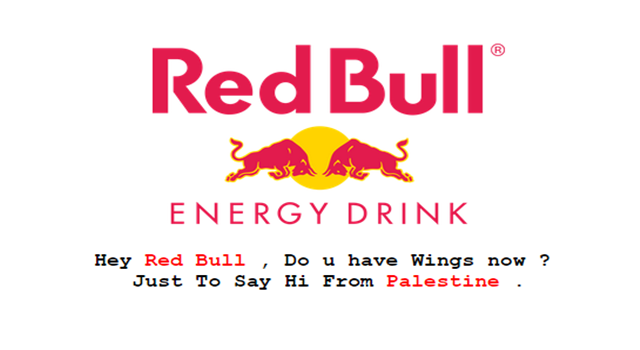 Red Bull Malaysia Website Hacked by Pro-Palestinian Hackers-2