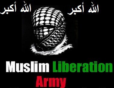 Israel's Ministry of National Infrastructures Websites Hacked by Muslim Liberation Army
