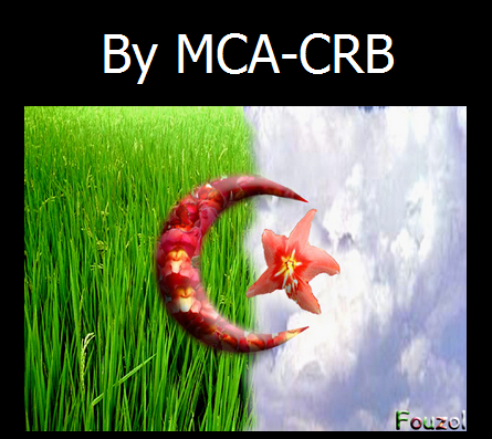 Romania's Google, Microsoft, Yahoo, Kaspersky & PayPal Defaced by Algerian Hacker MCA-CRB