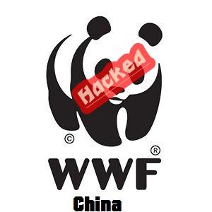 wwf-china-hacked