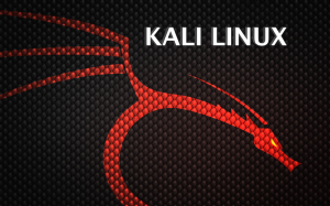 Backtrack to be Reborn as Kali Linux