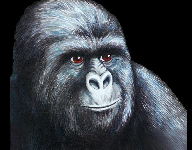 NullCrew Hacks Time Warner For Supporting Copyright Alert System, leaves gorilla cartoon deface image