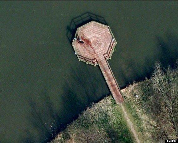 Google Maps 'Murder Scene' In Almere, Netherlands Is Water Trail From Golden Retriever