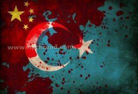 1600 Websites hacked by TurkHackTeam against Chinese Uyghur Muslims Massacre