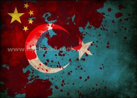 1600 Websites hacked by TurkHackTeam against Chinese Uyghur Muslims Massacre