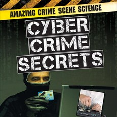 Have you ever wondered how cyber crimes are plotted?