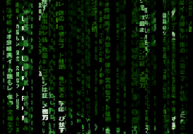 Pakistani Hacker hacks website of Indian Bioresource Information Network (IBIN)