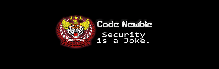 code-newbie-team-from-indonesia-and-malaysia-hacks-44-chinese-government-domains