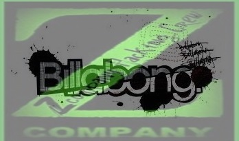 Z Company Hacking Crew Defaces 2 'Billabong International' Domains against Drone Strikes in Pakistan