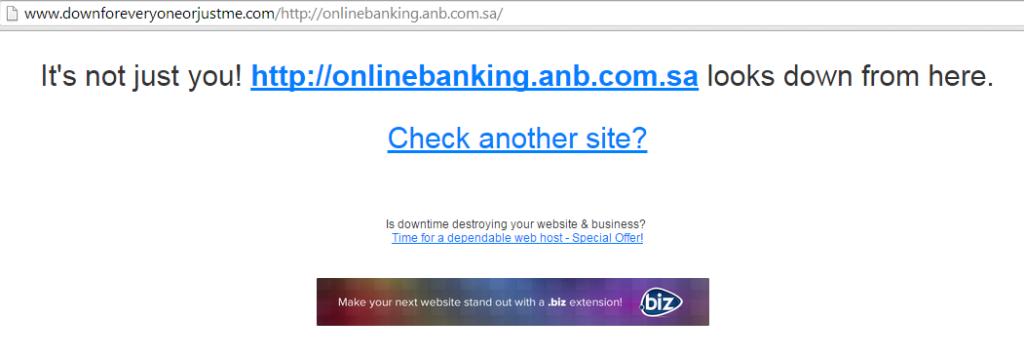 opsaudi-hackers-shutdown-saudi-arab-national-bank-website-2