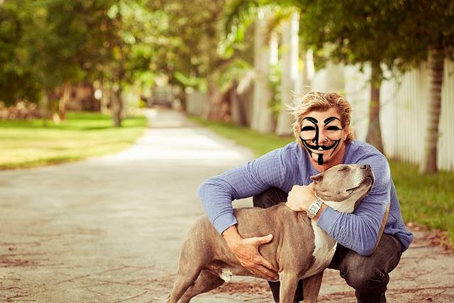 Anonymous Hacks and Removes X-Rated Animal Abuse Websites