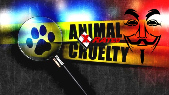 Anonymous Shuts Down Worlds Largest X-Rated Animal Abuse Forum