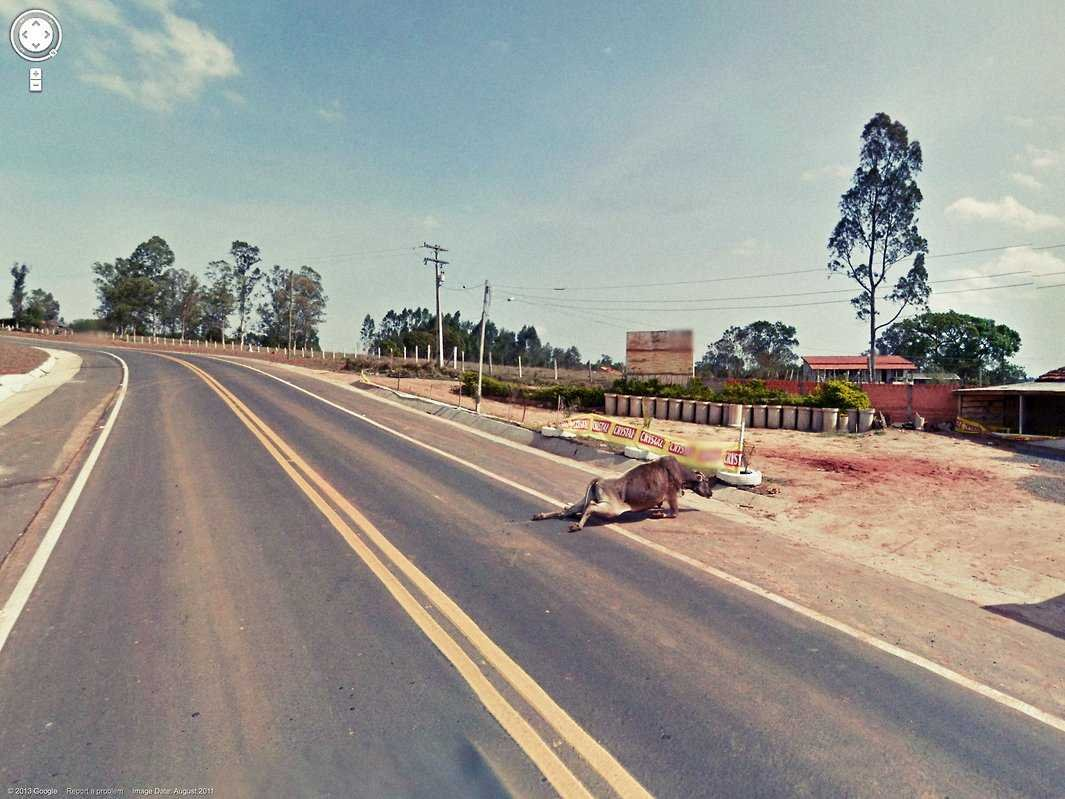80-funniest-creepiest-strangest-disturbing-google-street-view-images (15)