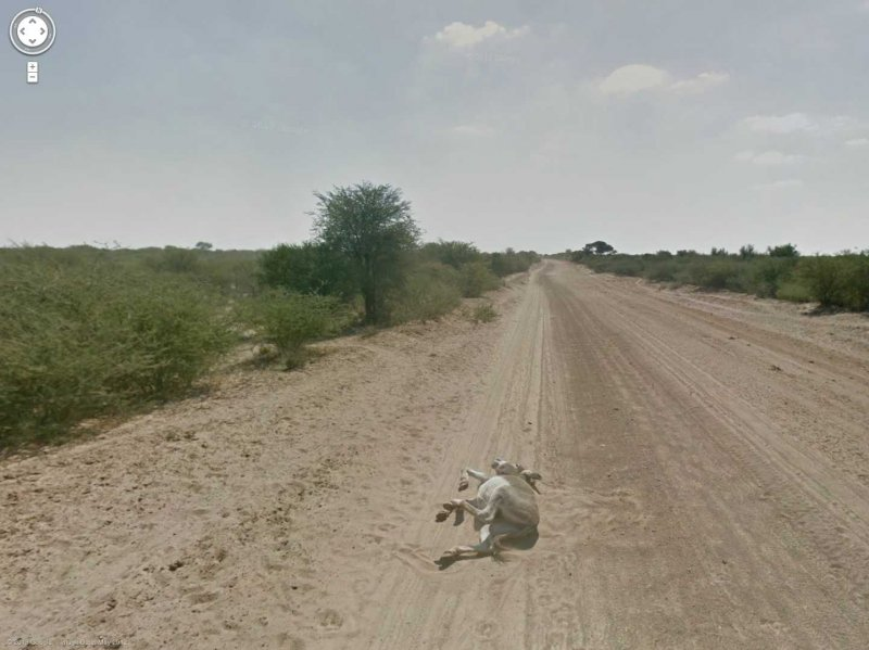 80-funniest-creepiest-strangest-disturbing-google-street-view-images 3