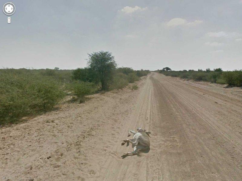 80-funniest-creepiest-strangest-disturbing-google-street-view-images 3