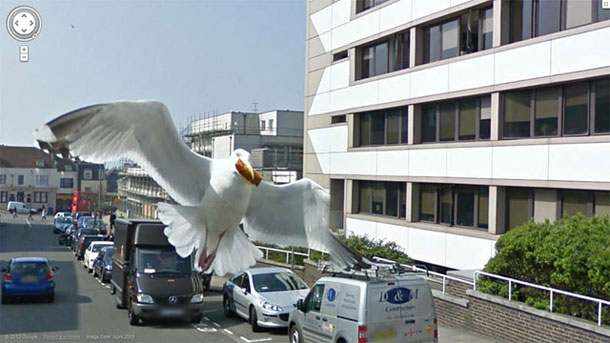 80-funniest-creepiest-strangest-disturbing-google-street-view-images (8)