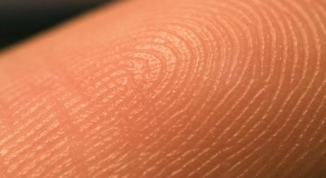 loreal-bioprinting-3d-print-human-skin