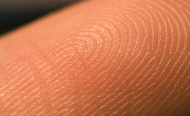 L'Oreal joins forces with Bioprinting Company to 3D print human skin