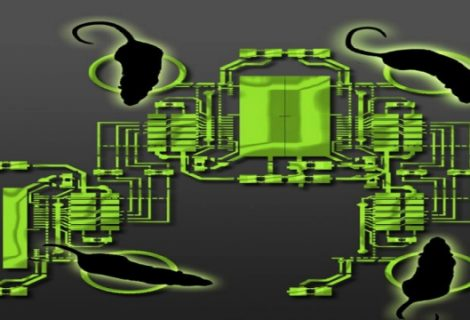 OmniRat Allows Cyber Criminals Hack Mac, Linux, Windows PC and Android Phones