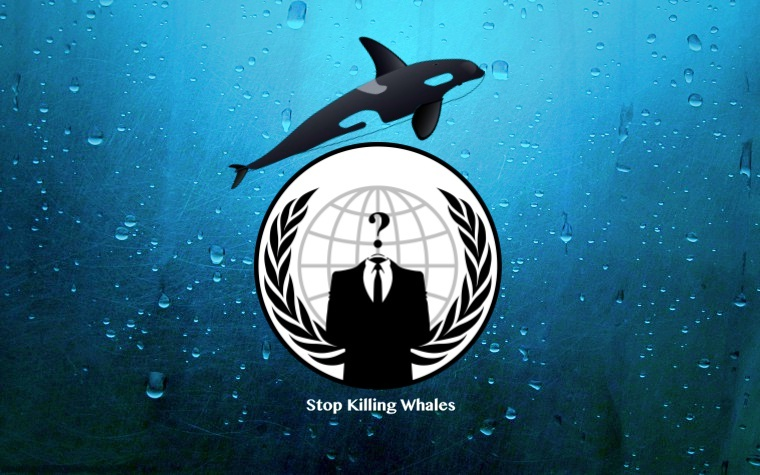 Anonymous Crushes Almost Every Iceland Govt Site Against Whale Slaughter