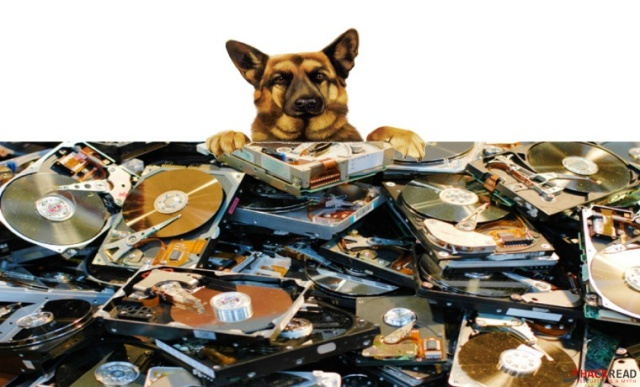 Police Dogs Trained To Sniff Out Hard Drives Coming For Pedophiles