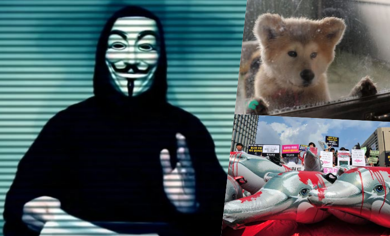 Anonymous Leak Data from Japan' Safari Land-Natural Zoo For Animal Rights