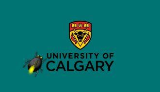 university-of-calgary-network-suffers-malware-attack