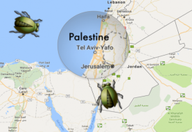 Google Says 'a bug' removed West Bank and Gaza from the map