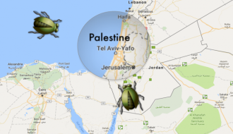 google-says-its-a-bug-that-removed-west-bank-and-gaza-from-the-map-1