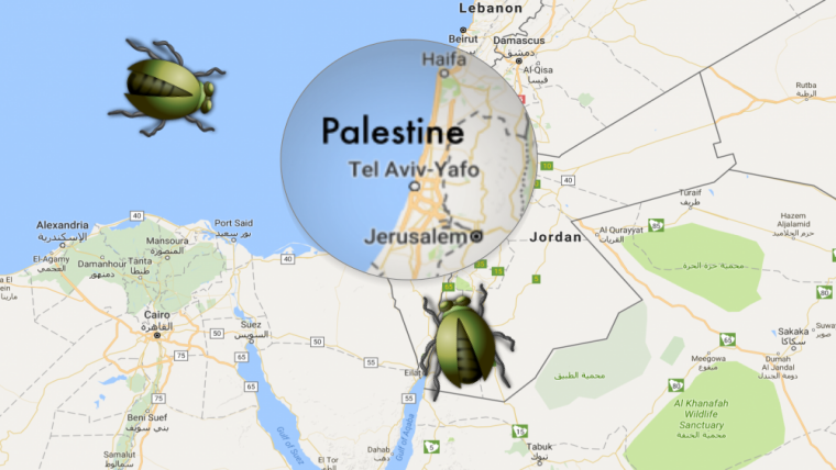 Google Says \'a bug\' removed West Bank and Gaza from the map