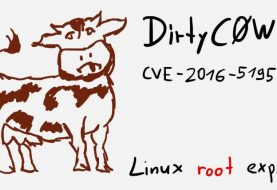 """Dirty COW"", the most dangerous Linux Bug for the last 9 years"
