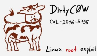 dirty-cow-the-most-dangerous-linux-bug-patched
