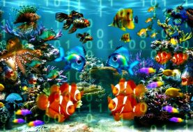Casino Becomes Victim of Data Hack—courtesy Fish Tank
