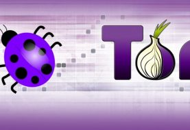 Tor Public Bug Bounty Program: Earn Up To $4000