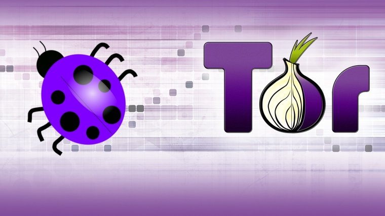 Tor Public Bug Bounty Program: Earn Up To $4000
