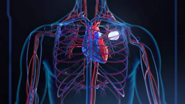 465k Pacemakers vulnerable; users must visit doctors for fix