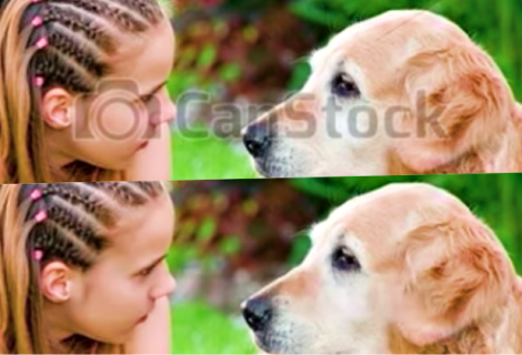 Google' software shows how to remove watermarks from Stock photos
