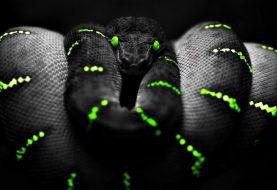 Nasty Mamba ransomware that encrypts entire hard drive resurfaces
