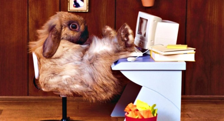 EternalRomance NSA Exploit a Key Player in Bad Rabbit Ransomware Mayhem