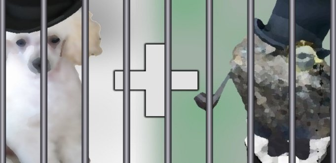 Lizard Squad & PoodleCorp Founder Pleads Guilty to DDoS Attacks