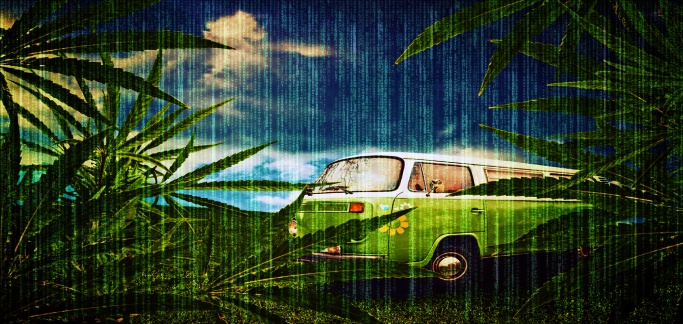 Washington State Marijuana Tracking System Hacked to Steal Route Data