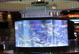 Hackers attack Casino's fish tank thermometer to obtain sensitive data