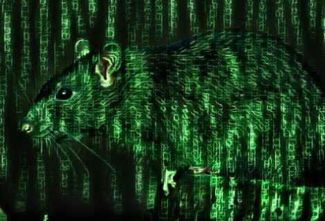 Parasite HTTP RAT loaded with advanced detection evasion capability