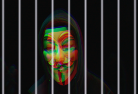 Anonymous hacker jailed for 10 years over hospital DDoS attacks