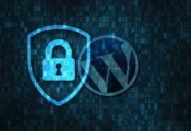 WordPress security: Steps to assess an employee before granting admin access to WordPress