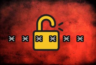 Critical vulnerabilities found in popular Password Managers