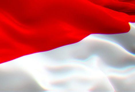 Hacker leaks 2.3 million Indonesian citizenship data for download