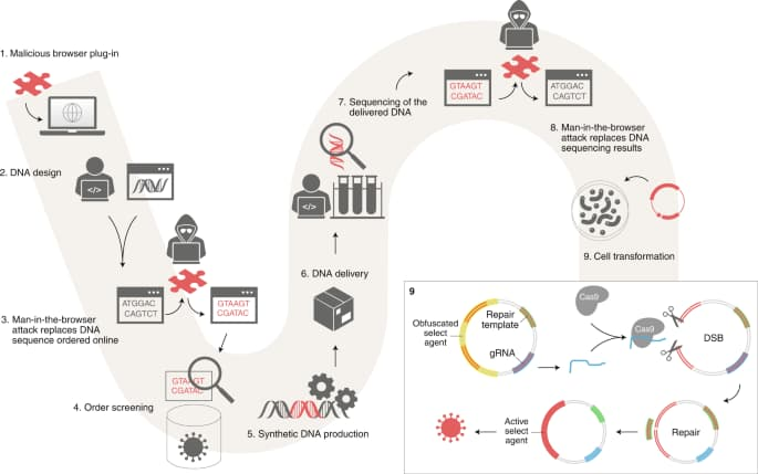 Malware attack can trick biologists into producing dangerous toxins