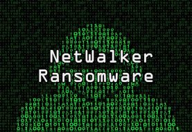 NetWalker ransomware disrupted - Cryptocurrency and domain seized